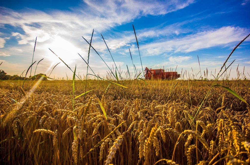 """Najava predavanja """"Dopunske djelatnosti na poljoprivrednom gospodarstvu i sufinanciranje iz mjera ruralnog razvoja"""""""