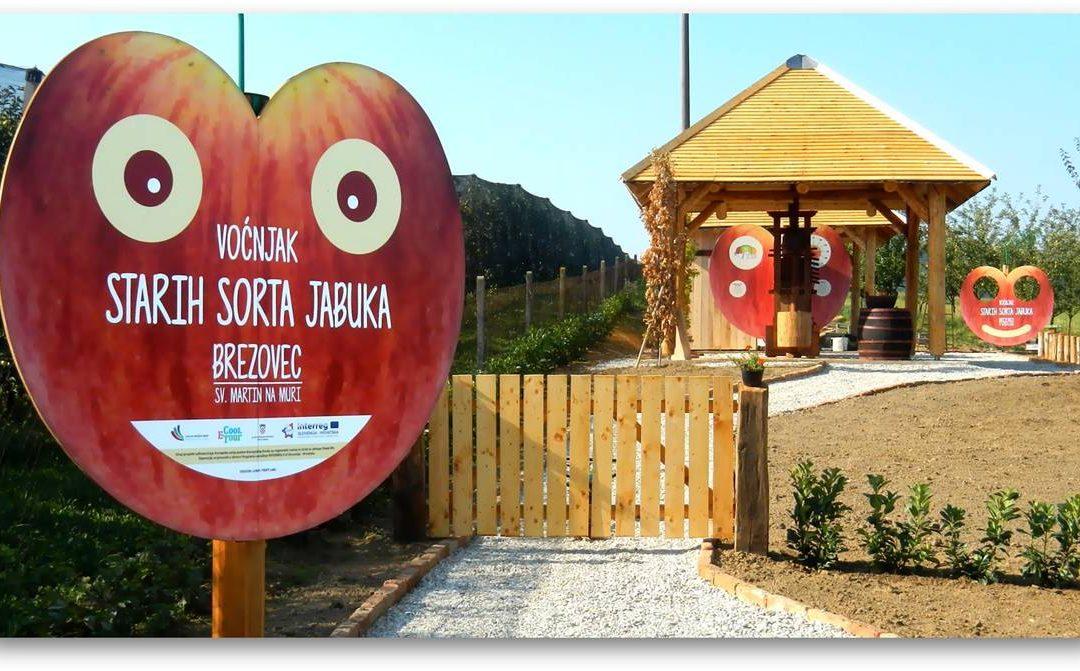 Završeni radovi u voćnjaku starih sorti jabuka u Brezovcu