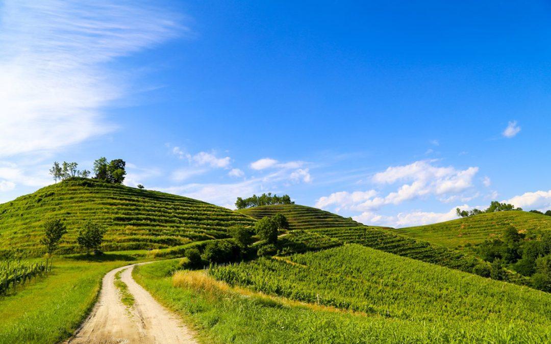 Natječaj za tip operacije 5.2.1 Obnova poljoprivrednog zemljišta i proizvodnog potencijala