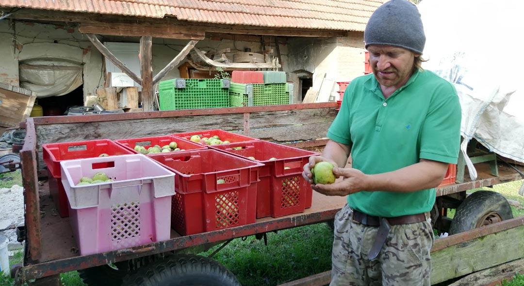 Ulaganjem u preradu voća do veće dodane vrijednosti