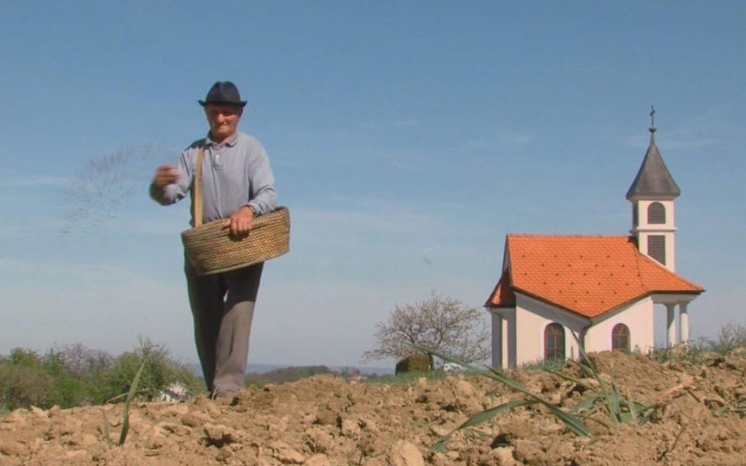 Dodijeljeno 11,8 milijuna kuna potpora za ulaganja u skladišne kapacitete za krumpir