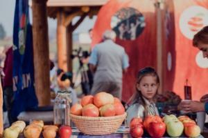 Izložba jabuka starinskih sorti povodom Svjetskoga dana jabuka 20. listopada 2018.