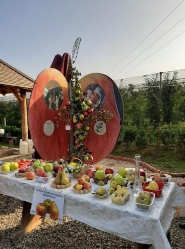 Svjetski dan jabuka u voćnjaku starih sorti jabuka u Brezovcu - 02