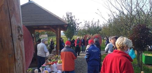 Svjetski dan jabuka u voćnjaku starih sorti jabuka u Brezovcu - 08