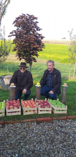 Svjetski dan jabuka u voćnjaku starih sorti jabuka u Brezovcu - 10