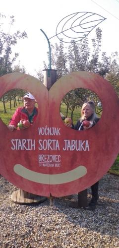 Svjetski dan jabuka u voćnjaku starih sorti jabuka u Brezovcu - 13